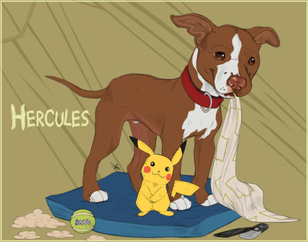 Flash Portraits - Herc The Hercules + Video!!