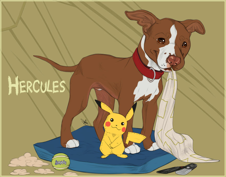 Flash Portraits - Herc The Hercules + Video!! by GoPuppy