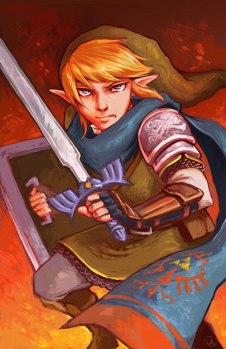Hyrulewarriors-link by om-nom-berries
