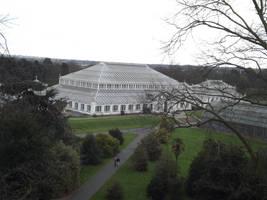 Kew Gardens: Greenhouse #2 by jadedlioness