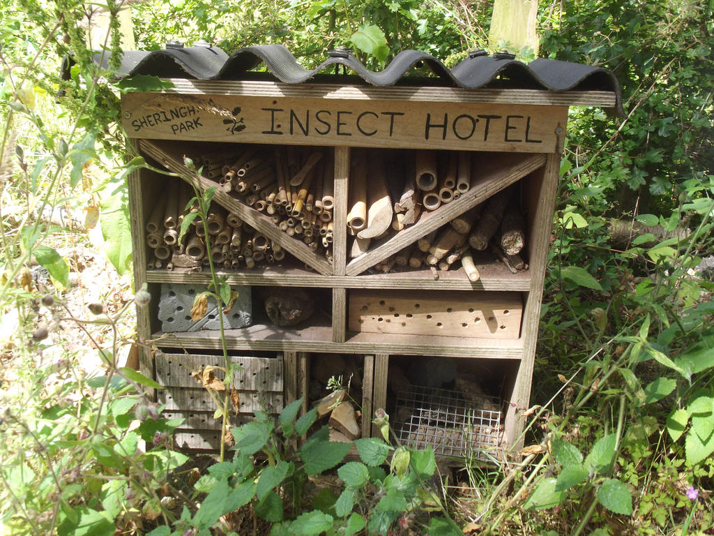Insect Hotel by jadedlioness