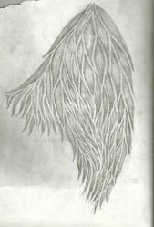 Tribal Wing Tattoo Design