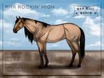 RHR Rockin' High | AQH | mare by MsBeesa