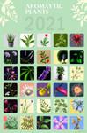 Aromaytic plants FINALLY FINISHED