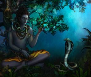 Shiva Forest-small-version