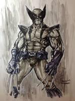 Wolverine by DerekRodenbeck