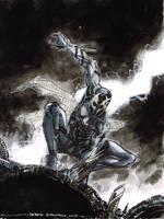Spiderman2099 by DerekRodenbeck