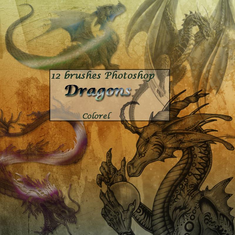 Dragons by libidules