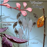 Winter foliage by libidules