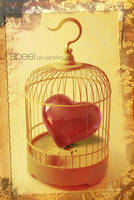 heart in a cage by apeel