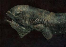 Fish by Pintoro