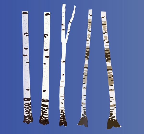 Forest elements: birches