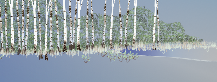 Building a forest: background 3
