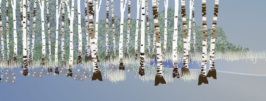 Building a forest: adding birches 3