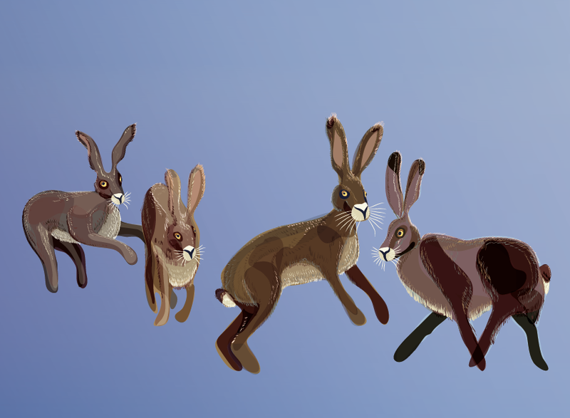 Hares WIP3 by Starsong-Studio