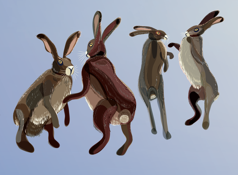 Hares WIP4 by Starsong-Studio