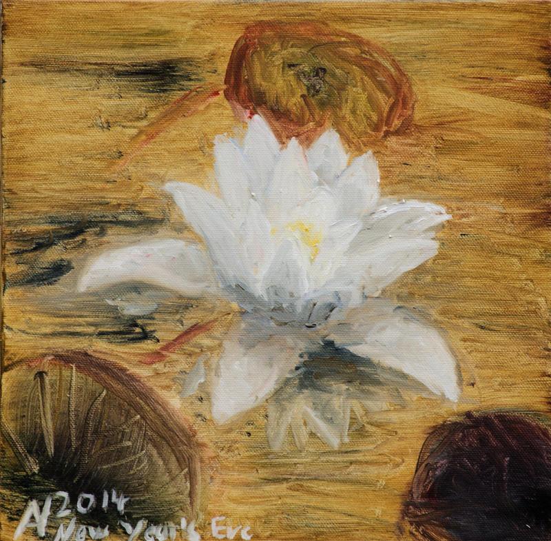 White waterlily by Starsong-Studio