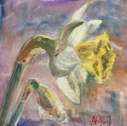 Daffodil (july 2015) by Starsong-Studio