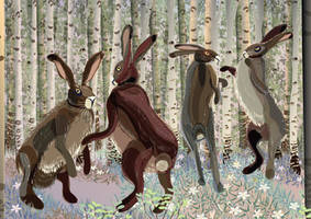 Hare story: party time