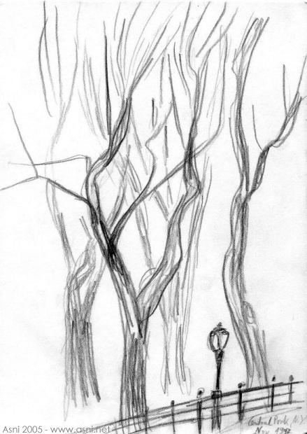 New York trees 1