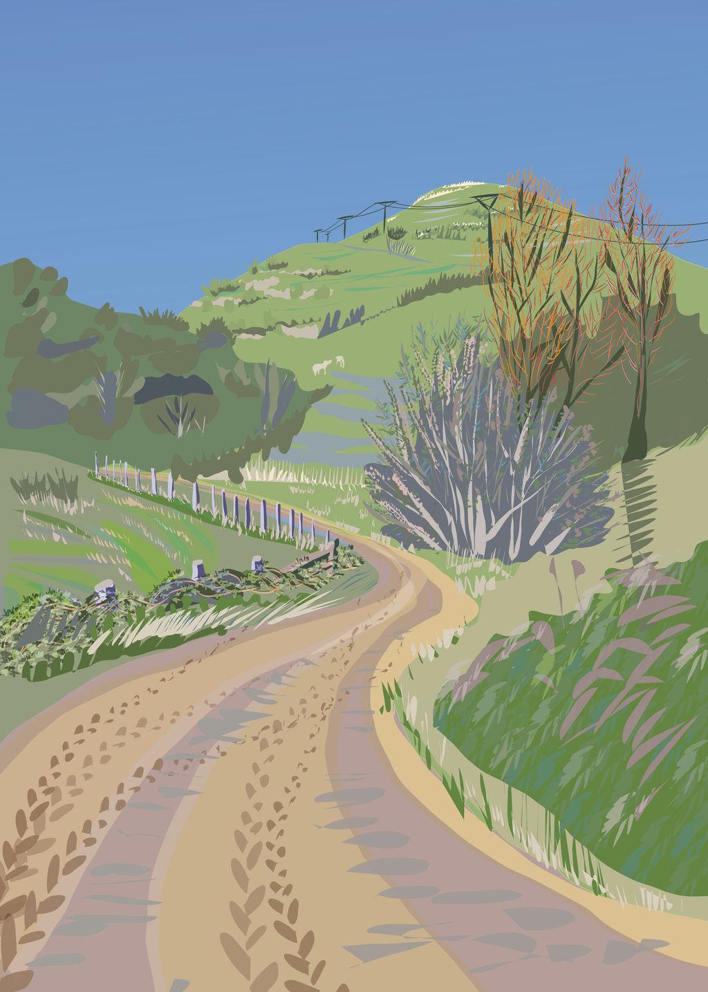 Wairarapa Back Roads II