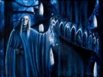 The Galadhrim