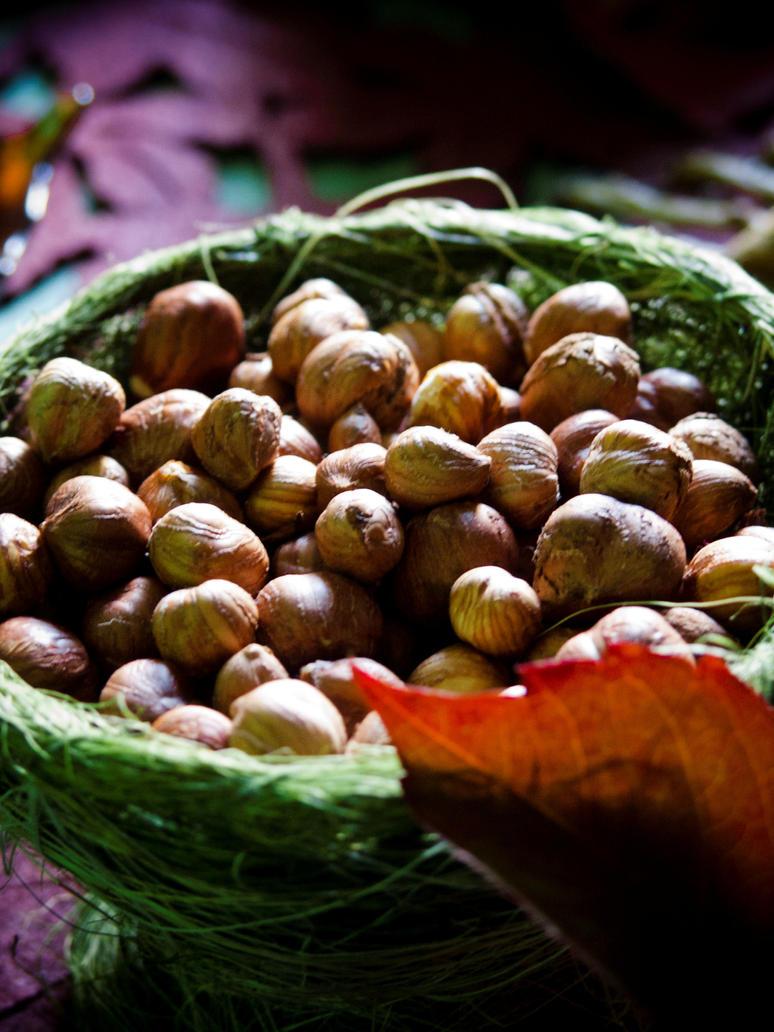 Hazelnuts by Gwillieth