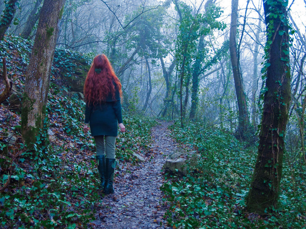 Misty forest 48 2 by Gwillieth