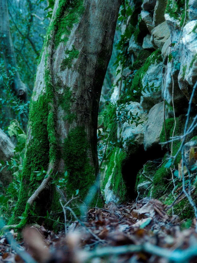 Forest Magic Aelin Laer by Gwillieth