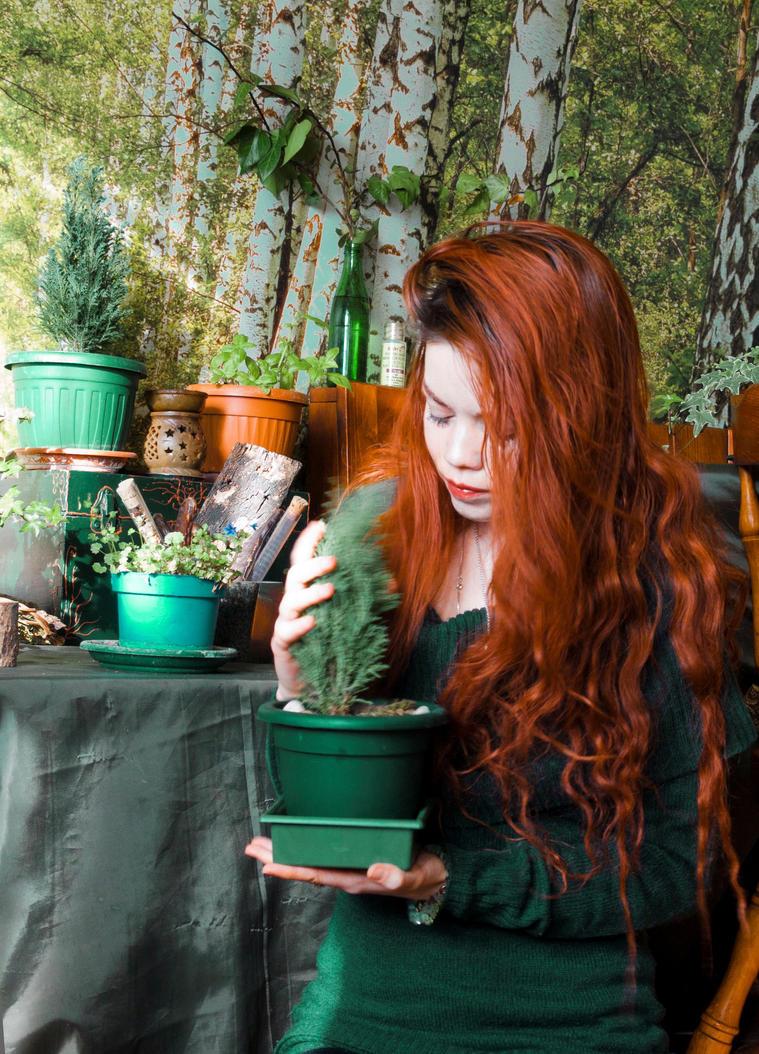 Atelier Plants by Gwillieth