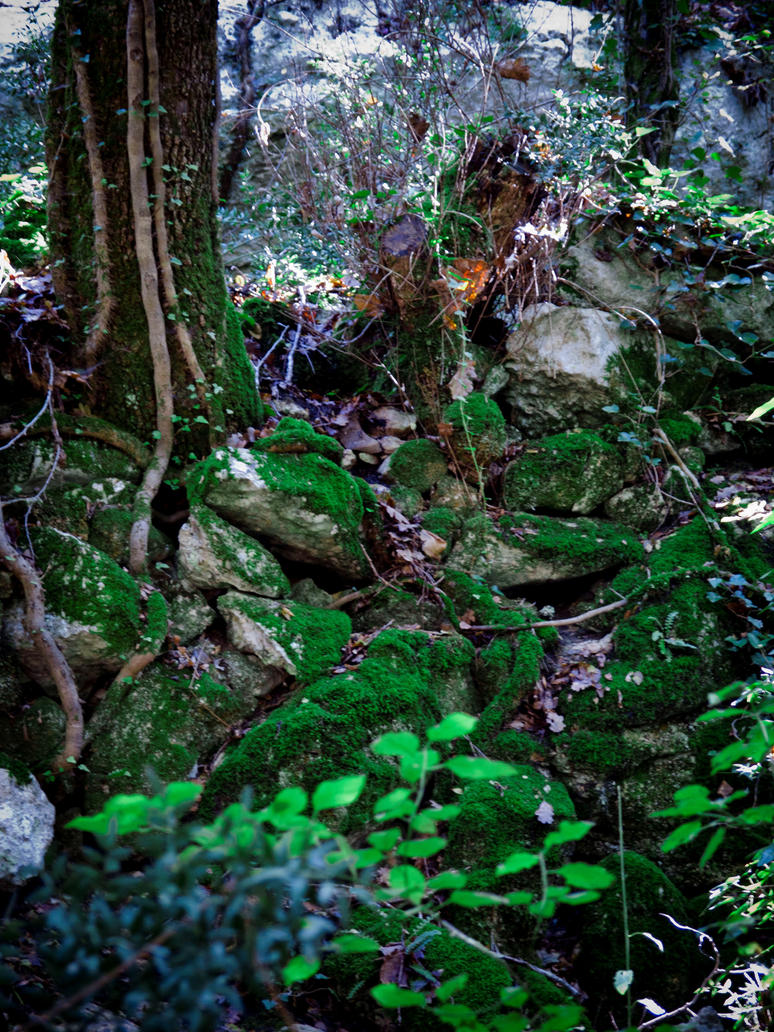 Moss by Gwillieth