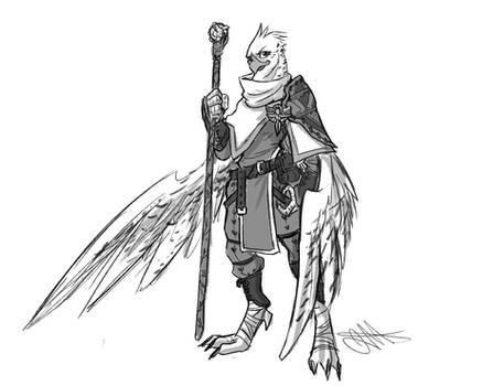 [Commission] Aarakocra Cleric