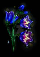 Bellflowers by KanaKonar