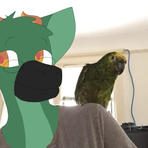 parrotreble's Profile Picture