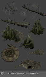 Skywind Bittercoast Asset Set 1