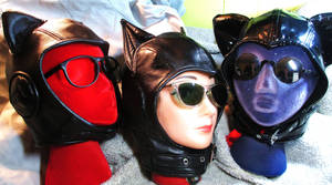 Catwoman Aviators Trio by LeatherHead72