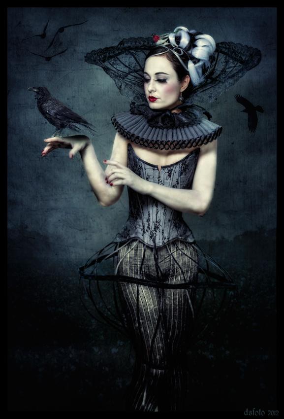 raven by dsfoto54