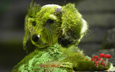 Moss Puppy by ViolentCat345