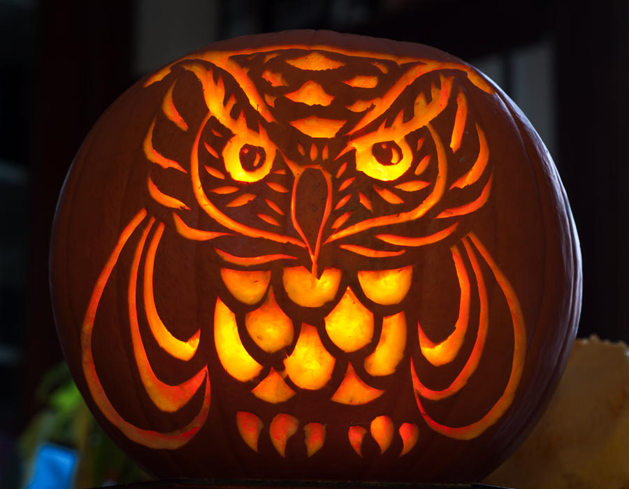 Owl Pumpkin by khiralfaythily