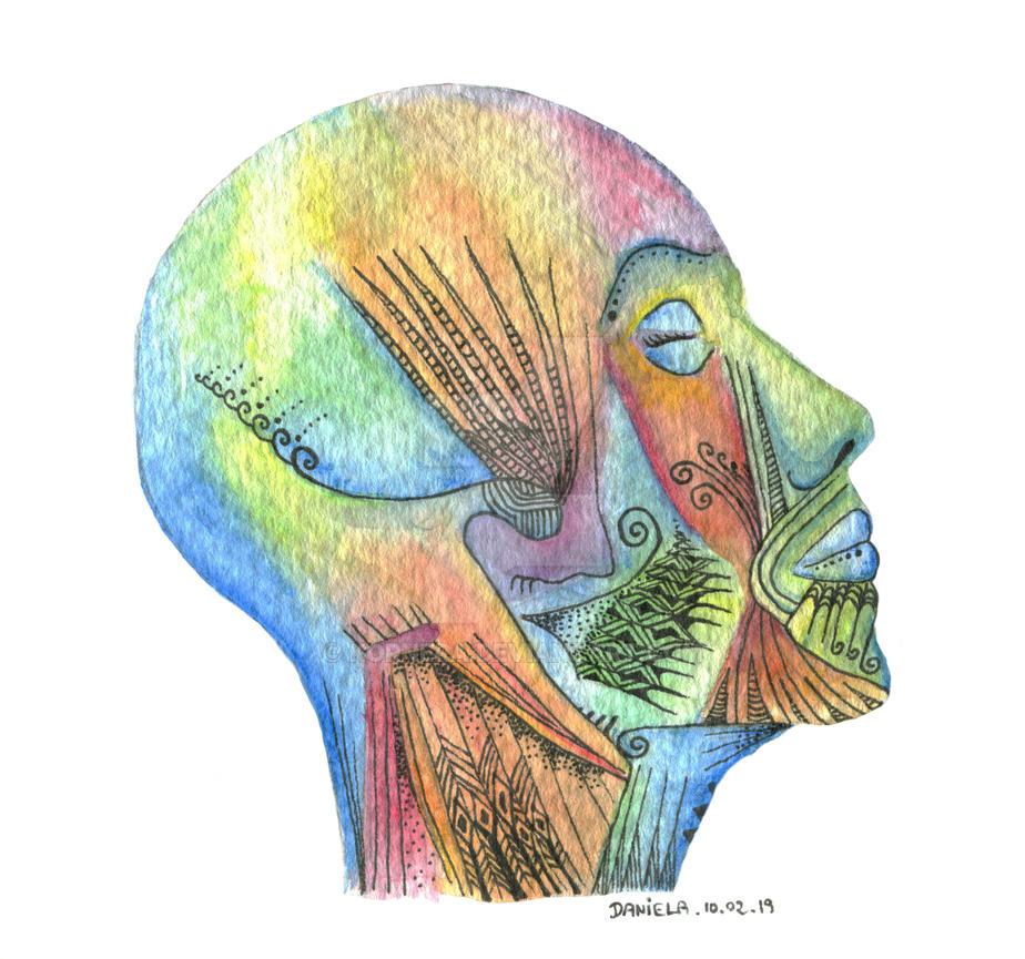 Colorful head by kornera