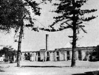 1881 (4) 1888-1900  Lurifico cultivo de arroz y ca