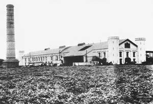 1881 (1) Hacienda Lurifico