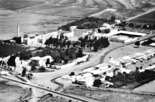 1881 (2) 1960-70 Ex Hacienda Lurifico de Chepen