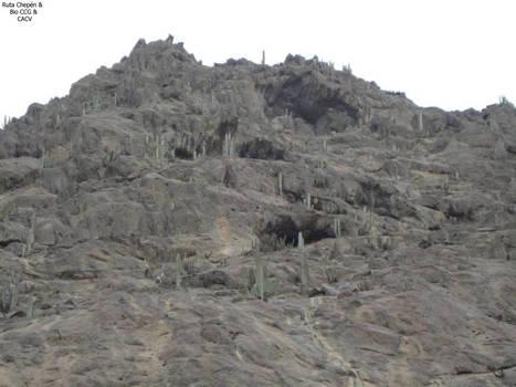 4b5a1 Cerro Chepen falda