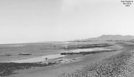 10 -3600 Pobladores de litoral marino se adentran