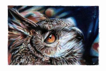Owl / pencil colors