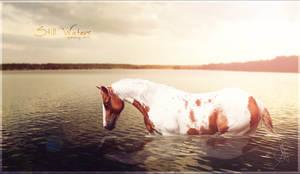 still waters. by xxELUHFUNT