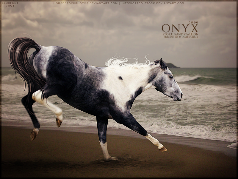 Onyx by xxELUHFUNT