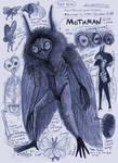 Mothman Anatomy Page