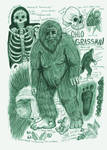 Grassman (Eastern Bigfoot) Anatomy Sketch Page